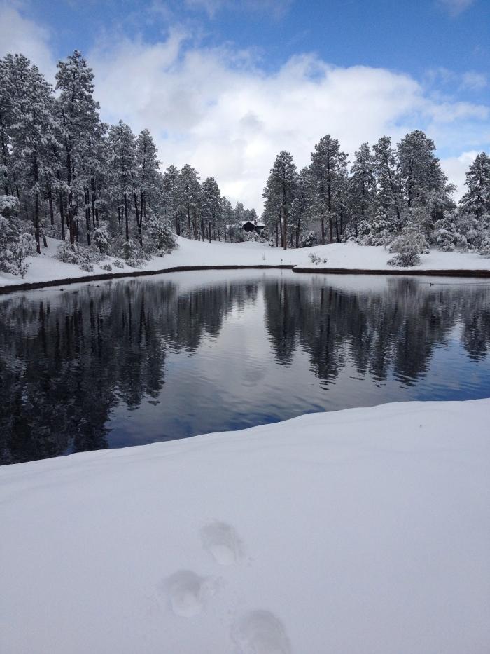 Payson, AZ snowfall